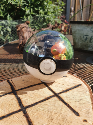 Pokemon Terra 8 cm - Torchic