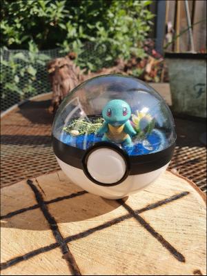 Pokemon Terra 8 cm - Squirtle