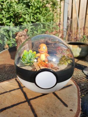 Pokemon Terra 10 cm - Charmender