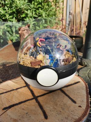 Pokemon Terra 10 cm -