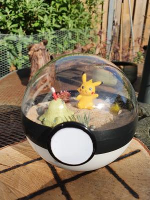 Pokemon Terra 10 cm - Pikachu 2