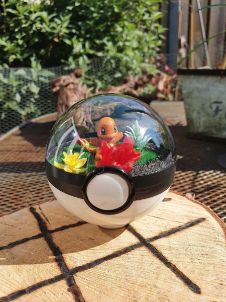 Pokemon Terra 8 cm - Charmender