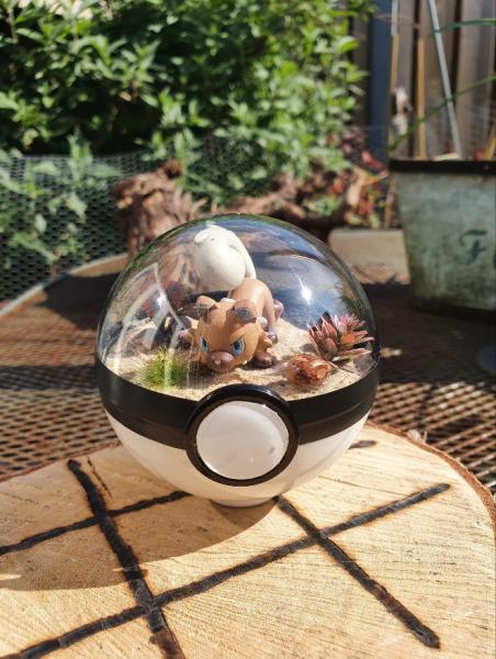 Pokemon Terra 8 cm -